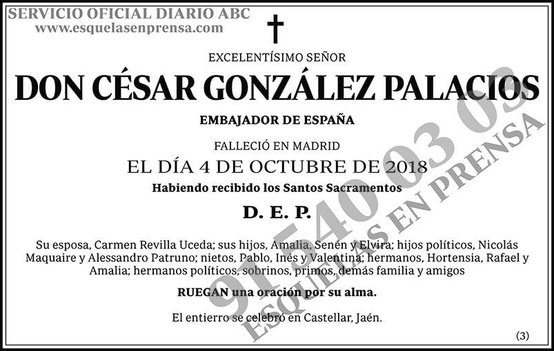César González Palacios